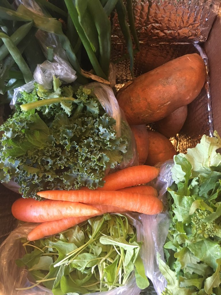 join csa to eat more vegetables