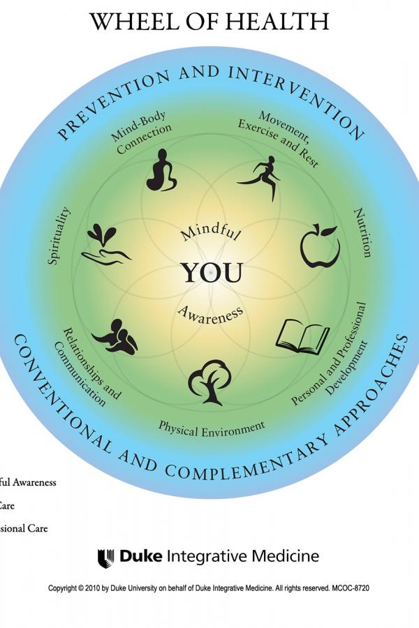 Explore the Wheel of Health