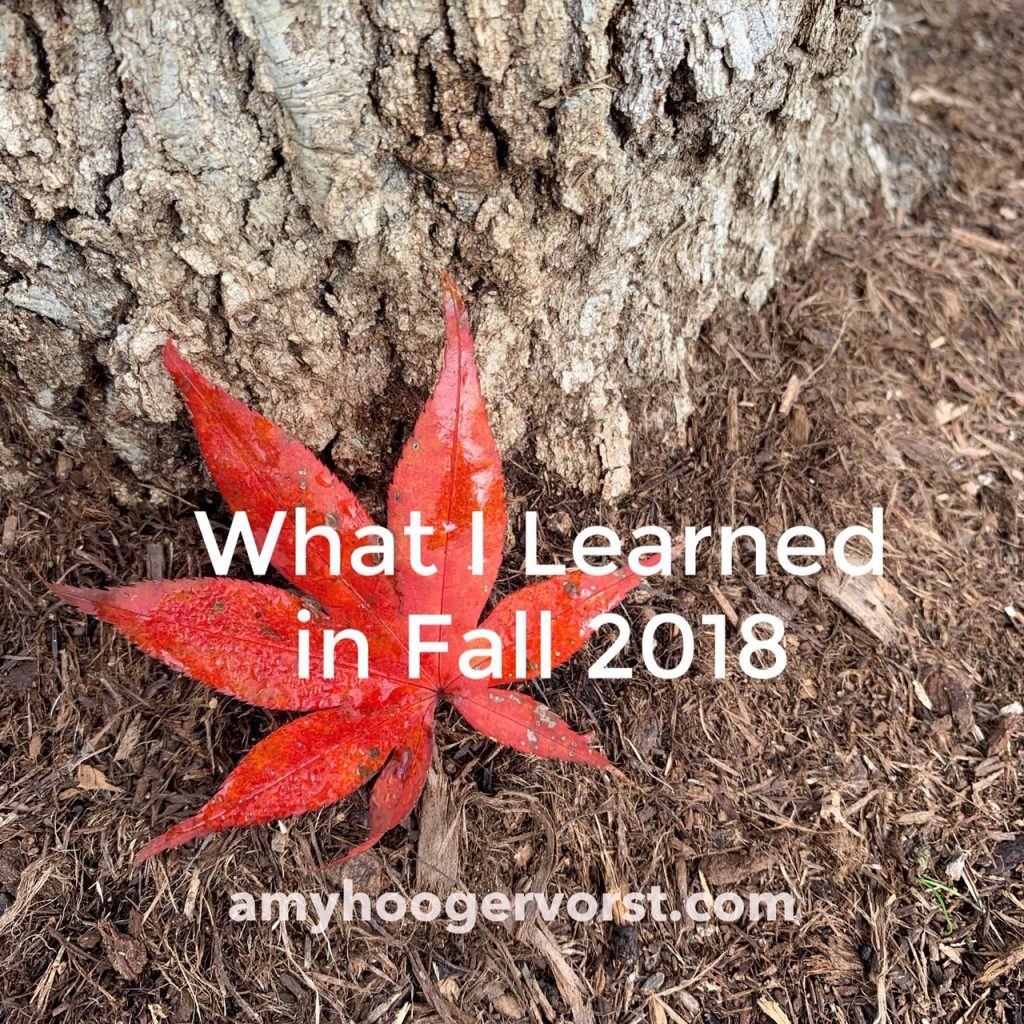 what i learned in fall 2018