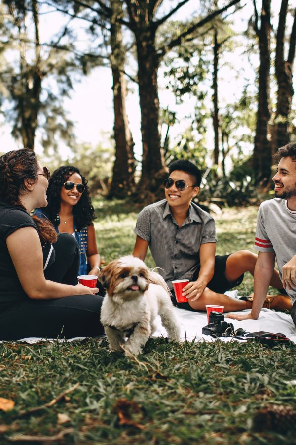 friends and family can play important roles as you create your healthy lifestyle team